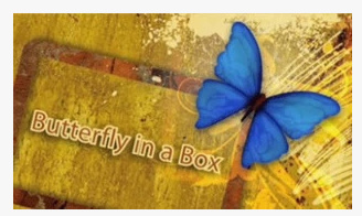 2012 Butterfly In a Box by Mark Presley (Download)