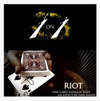 08 Theory 11 Dan Hauss - RIOT (Video Download)