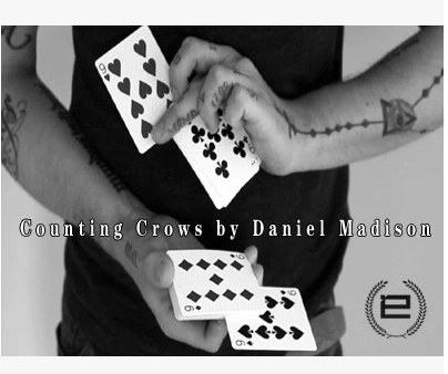 2014 Counting Crows by Daniel Madison (Download)