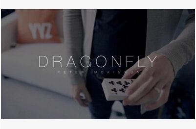 2014 Dragon Fly by Peter Mckinnon (Download)