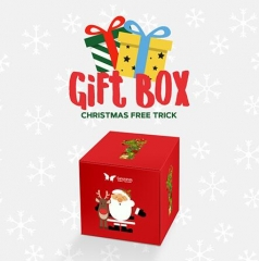 Gift Box by SansMinds Creative Lab (Video + PDF Download)