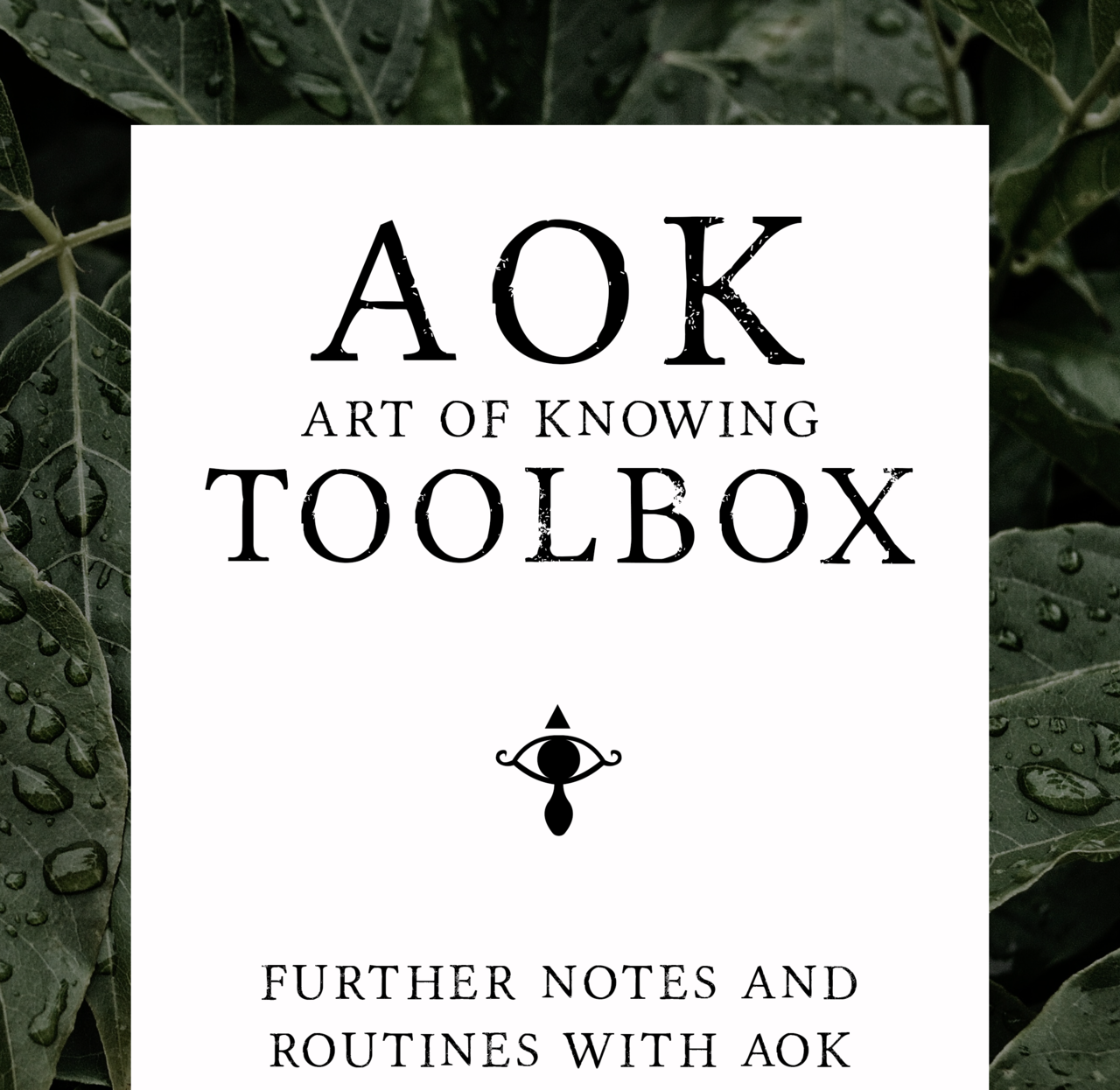 AOK Toolbox by Lewis Le Val (PDF Download)