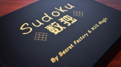Secret Factory and N2G Magic - Sudoku (MP4 Video Download)