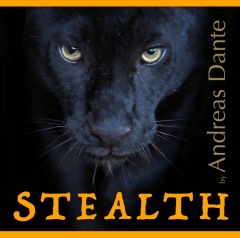 Stealth by Andreas Dante (MP4 Video Download, App not included)