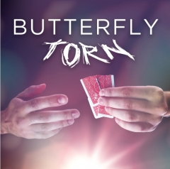 Butterfly Torn by Yvan Garmy (MP4 Video Download)