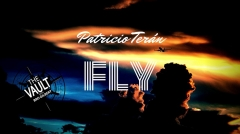 The Vault - Fly by Patricio Teran (MP4 Video Download)