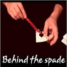 Mathieu Bich - Behind the Spade