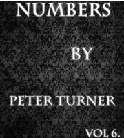 Numbers (Vol 6) by Peter Turner