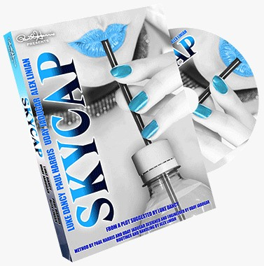 Skycap by Luke Dancy & Paul Harris